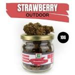 Strawberry CBD OUTDOOR 10G