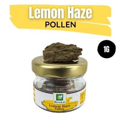 Lemon Haze Pollen 1G