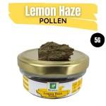 Lemon Haze Pollen 5G