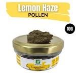Lemon Haze Pollen 10G