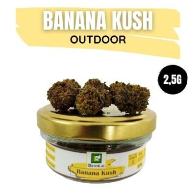 Banana Kush CBD OUTDOOR 2,5G