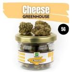 Fleurs de CBD Cheese Greenhouse 5G