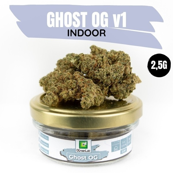 GHOST OG V1 Indoor 2,5G