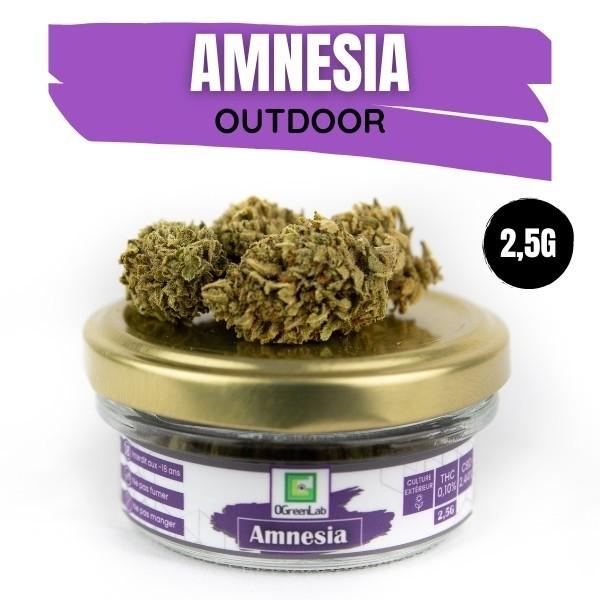 Amnesia CBD Outdoor 2,5G