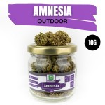 Amnesia CBD Outdoor 10G