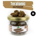 Teratonic CBD Outdoor 5G