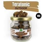 Teratonic CBD Outdoor 10G