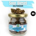 Sour Diesel CBD Outdoor 10G