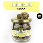 Limoncello CBD Indoor 10G