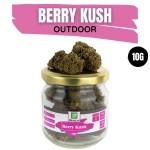 Berry Kush CBD Outdoor 10G
